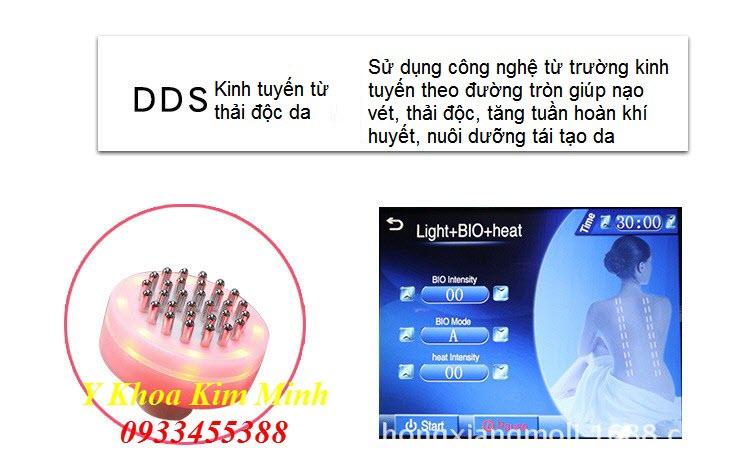 Đầu thải độc trẻ hóa da DDS kinh tuyến từ trường máy giảm béo 3D RF 60K - Y Khoa Kim Minh 0933455388