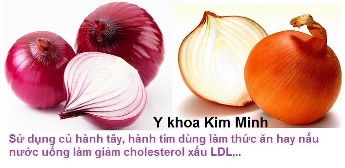 Giam cholesterol xau, ngan ngua tai bien dot quy bang cu hanh tay cu hanh tim nau nuoc hay dung lam thuc an Y khoa Kim Minh