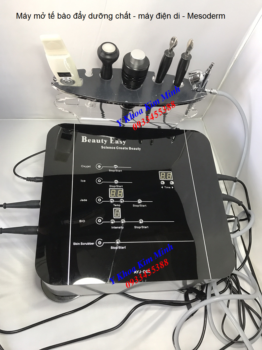 Máy điện di mesoderm mở tế bào đẩy dưỡng chất AYJ-D06 bán tại Tp Hồ Chí Minh - Y khoa Kim Minh 0933455388