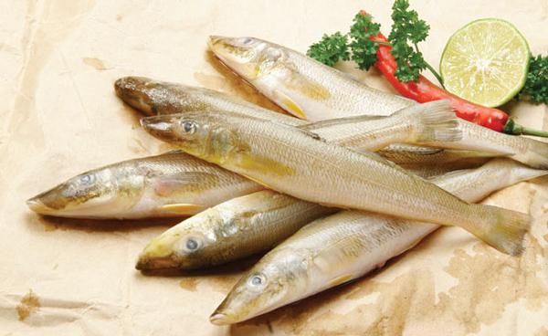Cá có lợi cho người bệnh tiểu đường
