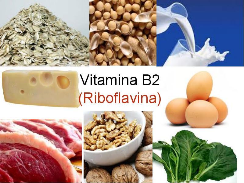 Công dụng của vitamin B2
