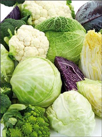 4 loại dinh dưỡng nếu thiếu hụt dễ gây ung thư