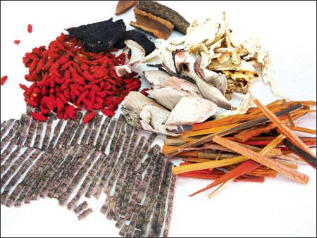 Tìm hiểu về các loại dược chất trong thuốc Đông y