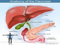 Kháng insulin của bệnh tiền tiểu đường P2