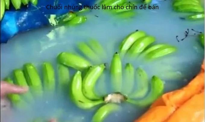 Ăn nhiều chuối có tốt không, đặc biệt là chuối ngâm hóa chất gây ung thư - Y khoa Kim Minh