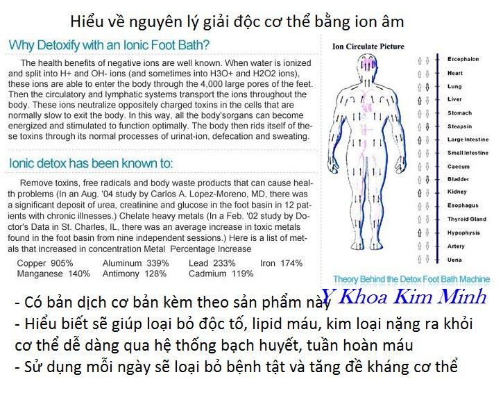 Máy đào thải độc tố ion âm là gì, nguyên lý hoạt động của ion âm với sức khoẻ con người - Y Khoa Kim Minh