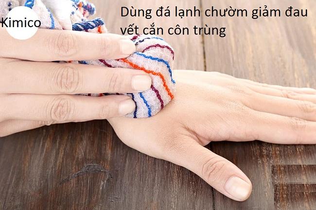 Dùng đá viên chườm giảm đau vết cắn côn trùng - Y khoa Kim Minh