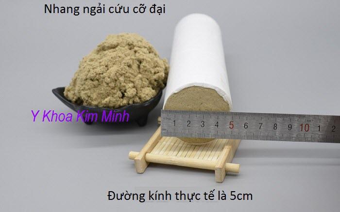 Nhang cham cuu co dai dung trong cham cuu co xuong khop - Y Khoa Kim Minh