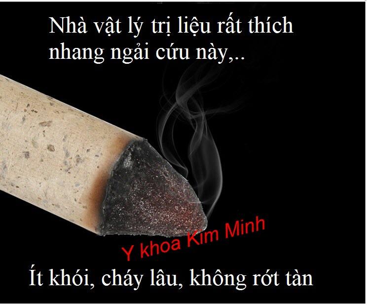 Nhang ngai cuu chuyen dung dieu tri viem khop goi, dau co xuong khop - Y khoa Kim Minh