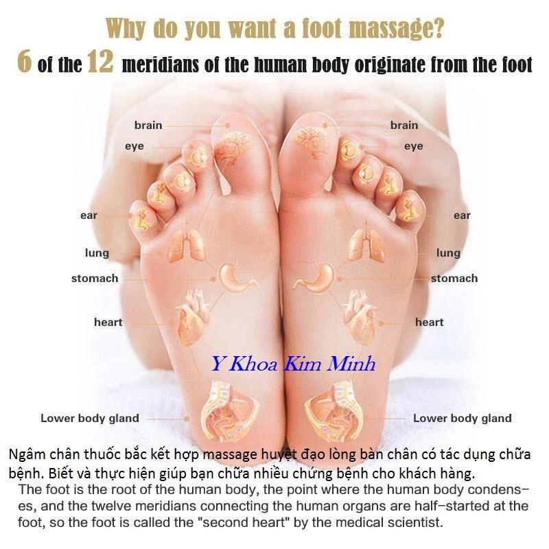 Kết hợp ngâm chân thuốc bắc và massage huyệt đạo lòng bàn chân chữa bệnh hiệu quả hơn - Y Khoa Kim Minh