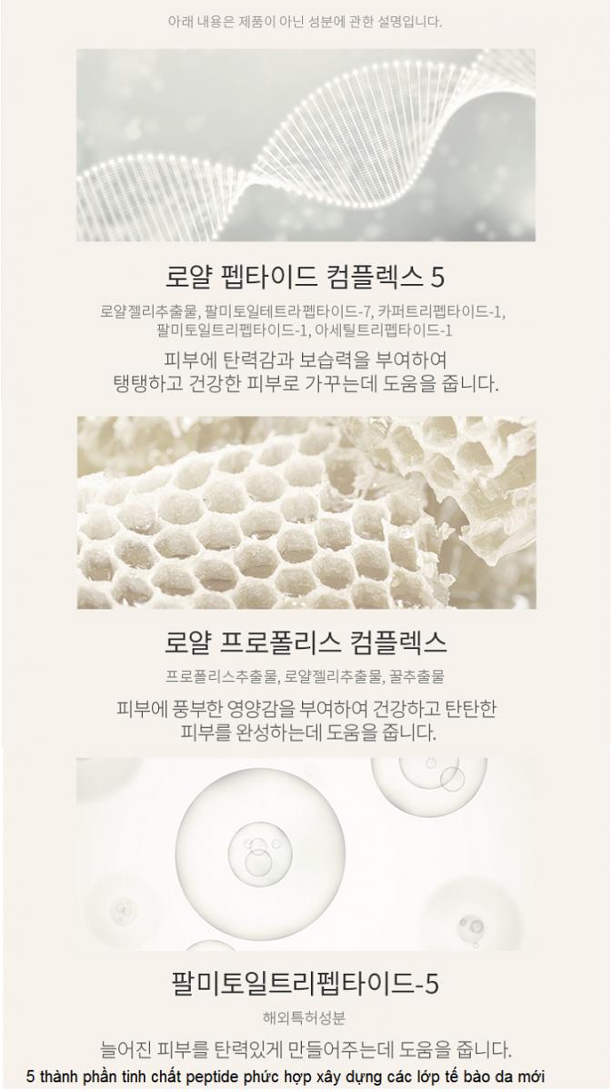 Thành phần tinh chất gồm 5 loại peptide giúp xây dựng tái tạo tế bào da mới Wrinkle Care Ampoule Hàn Quốc - Y khoa Kim Minh