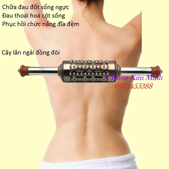 Trị đau lưng, đau cột sống ngực, cong cột sống lưng bằng cây lăn ngải đồng đôi - Y Khoa Kim Minh